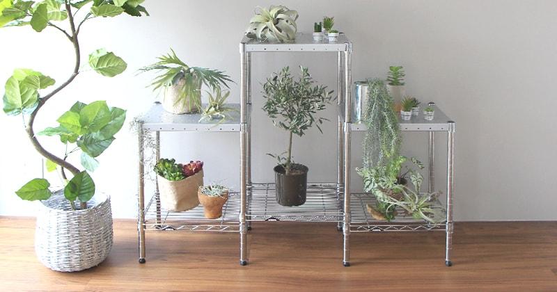 ホームエレクターレディメイドシリーズのパンチングシェルフに観賞植物を配置すると…。